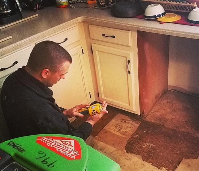 Mold Is No Match for SERVPRO of The Andovers