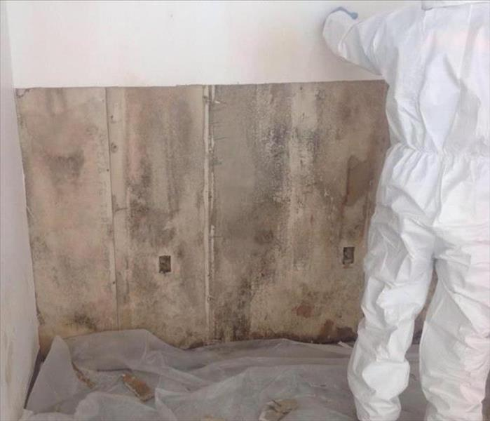 Mold Remediation When Mold is Involved in The Andovers...