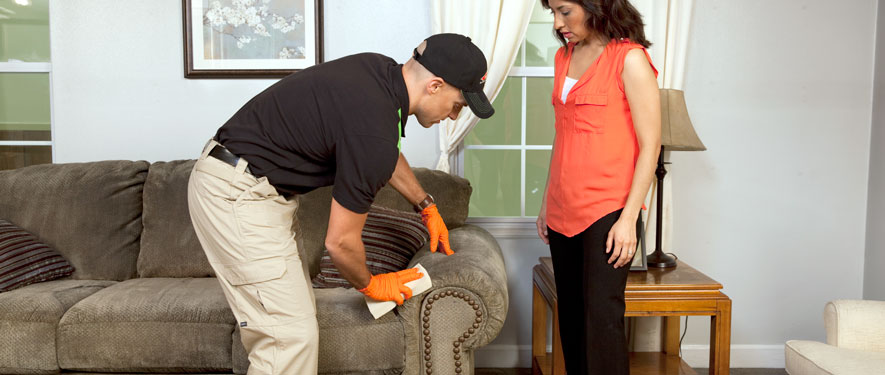 Andover, MA carpet upholstery cleaning