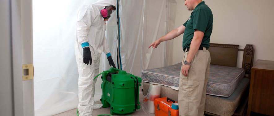 Andover, MA mold removal process